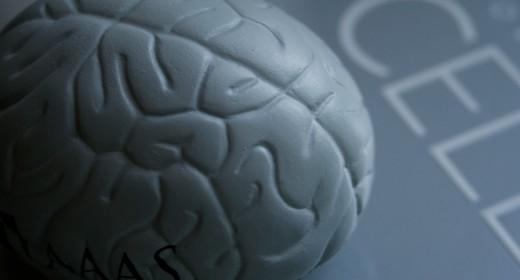 IBM prepara un chip que imita al cerebro humano