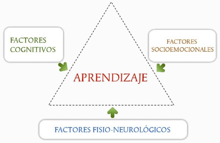 """Santiago García-Faure: """"Los docentes son la clave en la detección de los trastornos de aprendizaje"""""""