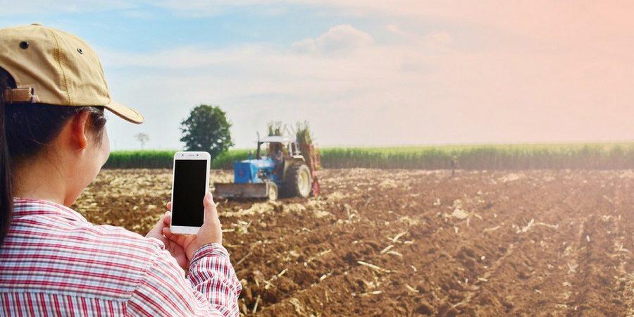 Movistar se adjudica la mayor parte de las ayudas para desplegar fibra rural